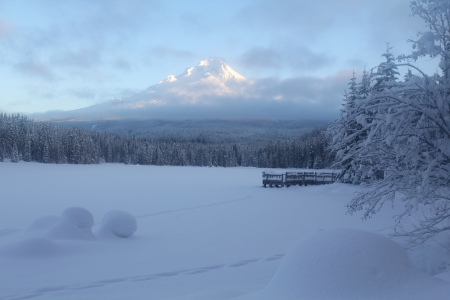 Morning light on Mt Hood