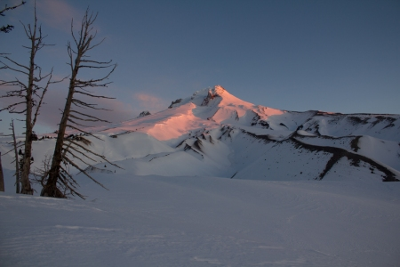 Boy Scout Ridge Mt Hood morning light
