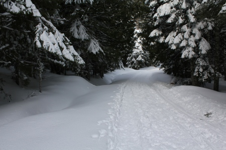 Trail conditions 03