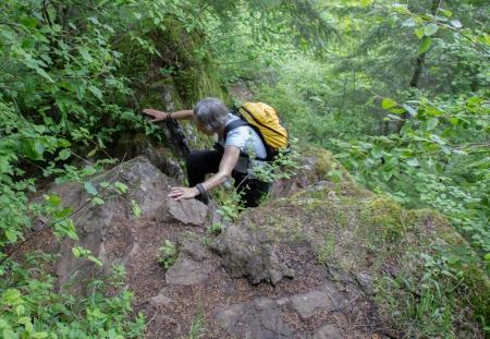 climbing up 01