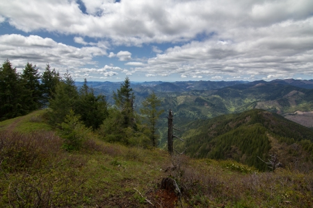 Kings Mountain view