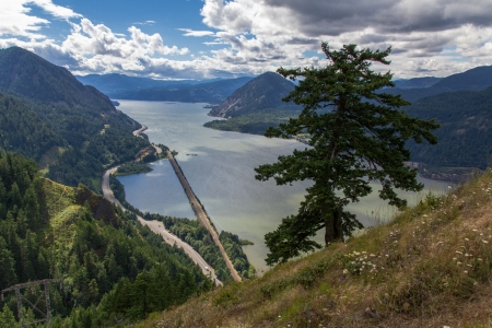 Columbia Gorge View