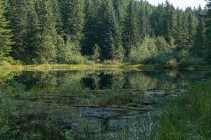 146-Hidden Lake