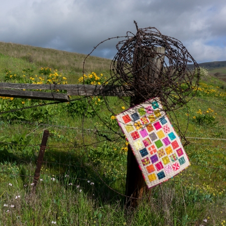 Quilt Barb Wire