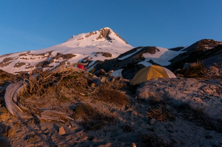 Morning Light Gnarl Ridge