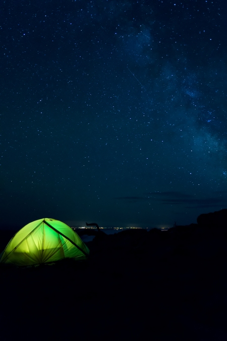 Night Sky Gnarl Ridge