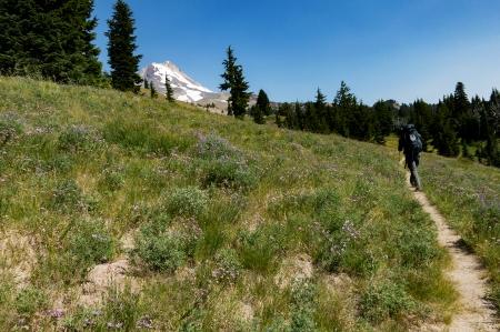 03 Mt Hood Meadows