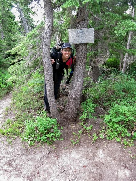 42 Ann in tree