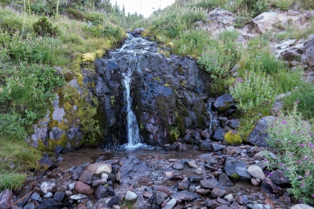 Campsite stream