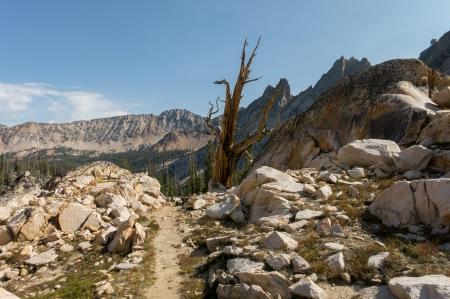 Cramer Divide Trail