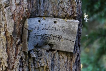 No Camping Meadow