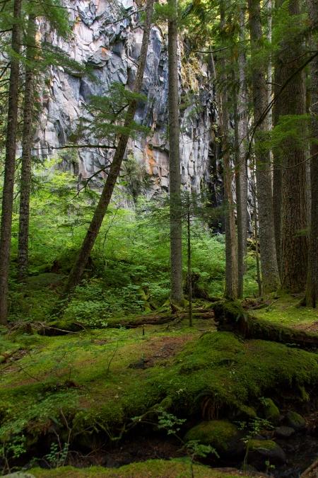 Ramona Falls trail Green
