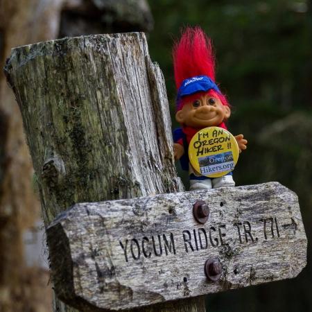 Swag Yocum Ridge Trail