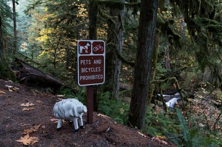 Pets Prohibited