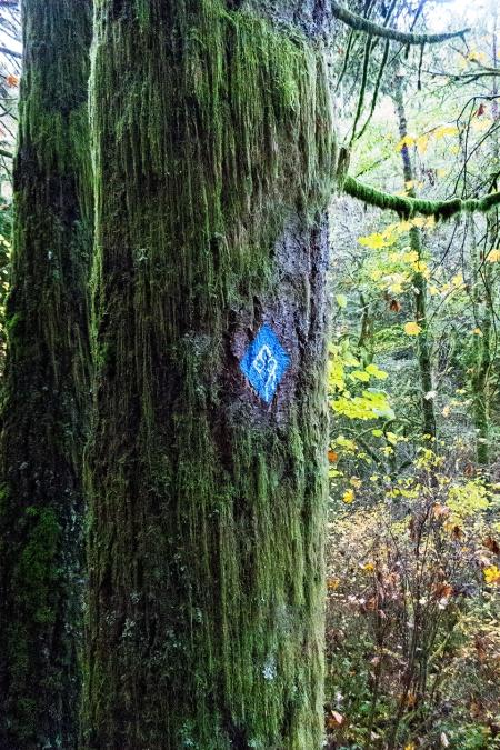 Anns Trail Marker