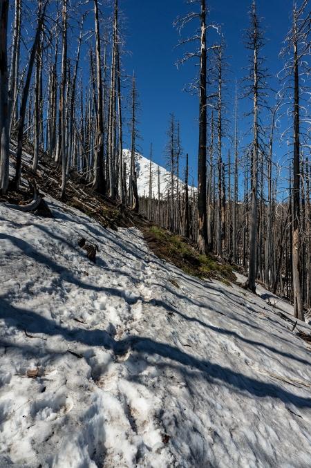 DSC00828 snow trail