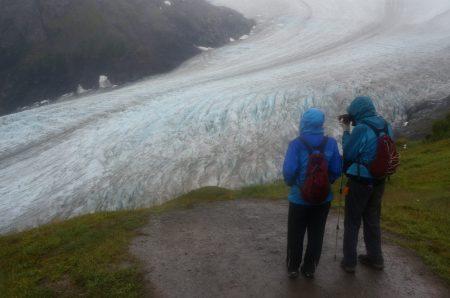 Exit Glacier end