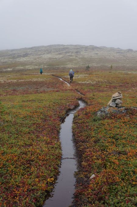 wetter trail