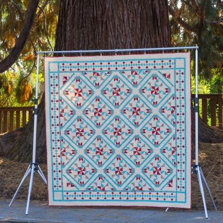 DSC02367 quilt by tree